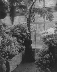 Isabella Gardner in the conservatory at Green Hill, 1905. Photographer Thomas E. Marr